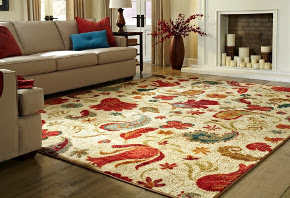 Rug cleaning service Auckland