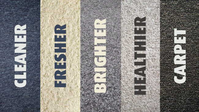 Professional-Carpet-Cleaning-Auckland-North shore