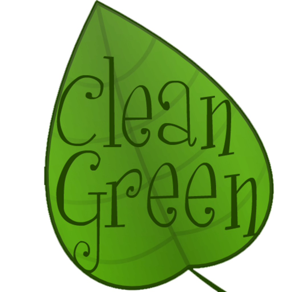carpet-cleaning-New Windsor-auckland