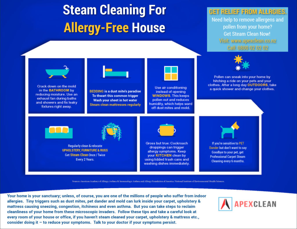 Carpet Upholstery cleaning for allergy free home