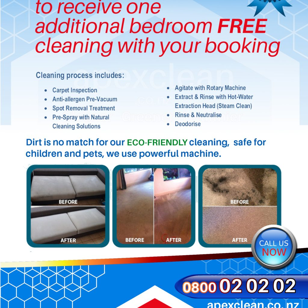 Rug Cleaning Auckland Flyer