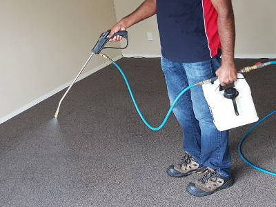 Carpet Cleaning Auckland Pre-Sprayer